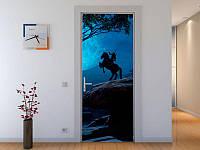 Наклейка на дверь Всадник