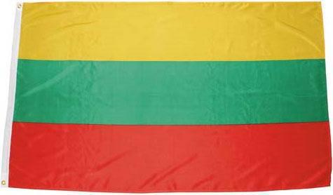 Флаг Литвы 90х150см MFH 35103W, фото 2