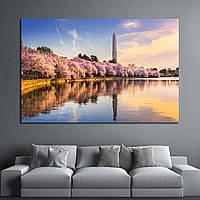 Картина - Вашингтон