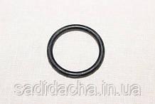 Уплотнительное кольцо для перфоратора Vitals