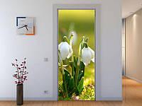 Наклейка на дверь Белые колокольчики