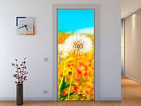 Наклейка на дверь Одуванчик