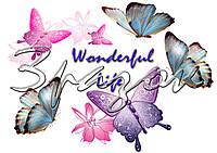 wanderfyl_life..jpg