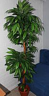 Дерево  Манго  искусственное  двойное