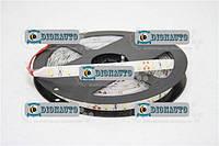 Лента диодная (цвет белый) 5 метров 24V  (SMD 5630-24V)