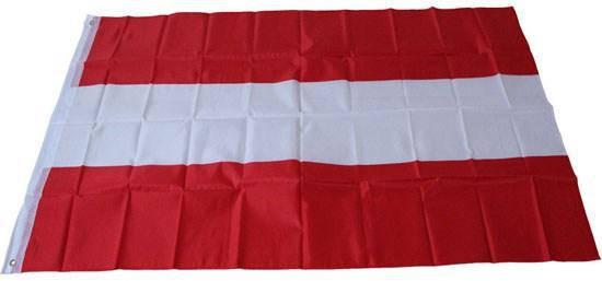 Флаг Австрии 90х150см, фото 2