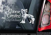 Китайская хохлатая собака стикер