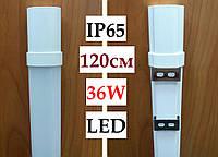Светильник светодиодный герметичный Z-Light IP65 36W 1200мм 6000К LED