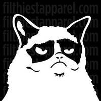 Наклейка Недовольный кот, фото 1