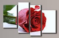 Картина модульная HolstArt Красная роза 2 73*116см 4 модуля арт.HAF-085