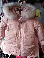 "Зимняя курточка на девочку ""евро зима"""
