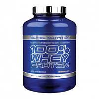 Scitec Nutrition 100% Whey Protein 2.35кг протеин сывороточный спортивное питание