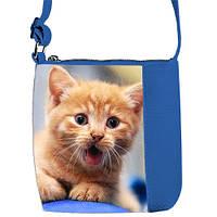 Синяя сумка для девочки с принтом Рыжий кот