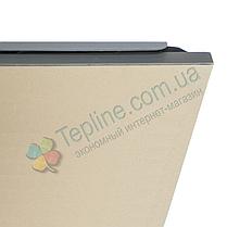 Инфракрасный керамический обогреватель Венеция ПКИТ 250 60х30 см бежевый, фото 2
