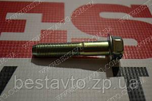 Болт кріплення амортизатора до кулака av/lac/nu/tac/leg/ep/ev