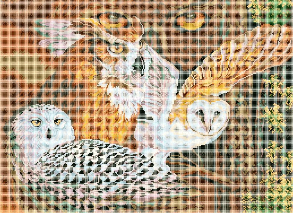 Схема для вишивки та вишивання бісером Бисерок «Погляд сови» (A2) 40x60 (ЧВ-7039(10))