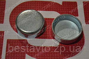 Заглушка блоку циліндрів (34 мм) nex/nubira/lanos/aveo/tacuma/evanda/leganza/lacetti/nubira