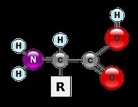 Аминокислоты в растениеводстве
