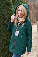 Женская куртка Сезон весна - осень 2018 цвет Бутылка