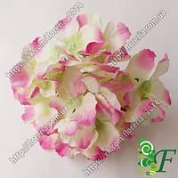 Головка Гортензии Йола бело-розовая