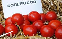 Семена томата Солероссо весовые в Украине