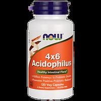 Комплекс ацидофильных бактерий (пробиотик) - Ацидофилус 4х6 / Acidophilus 4х6, 120 капсул