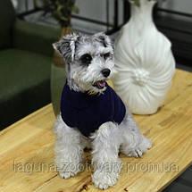 Свитер АКВА для собак, размер  S  синий, фото 2