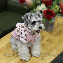 Куртка ДОРОТИ для собак, розовый, размеры S, M, L, XL, фото 2