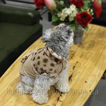 Куртка ДОРОТИ для собак, бежевый, размеры S, M, L, XL, фото 3