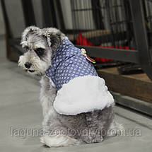 Куртка ЧЕРРИ для собак, голубой, размеры S, M, L, XL, фото 3