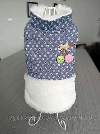 Куртка ЧЕРРИ для собак, голубой, размеры S, M, L, XL, фото 2