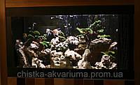 Чистка аквариума, фото 1