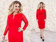 Платье (48,50,52,54) —  крепдайвинг купить оптом и в розницу в одессе  7км