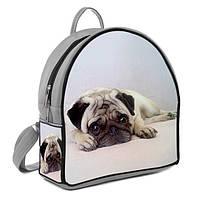 Модный рюкзак спящая собачка