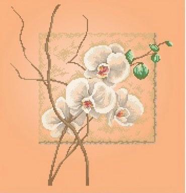 Схема для вишивки та вишивання бісером Бисерок «Орхидея»бежевый фон (40x45) (ЧВ-6008(10))