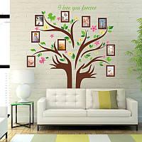 Интерьерная наклейка на стену Цветущее дерево с фоторамками