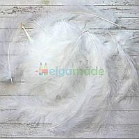 Перья натуральные белые, 13-15 см, 50 шт