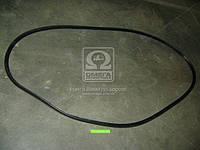 Уплотнитель стекла ветрового КАМАЗ ЕВРО (пр-во БРТ) 53205-5206054-10Р