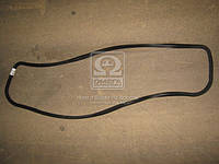 Прокладка крышки головки цилиндров ЯМЗ 238  238-1003270