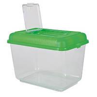 Пластиковый контейнер  31х21х21см, для рыб, черепах, ахатин