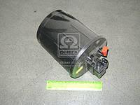 Адсорбер ГАЗ 2410, ГАЗЕЛЬ с клапаном (покупн. ГАЗ) 31105-1164010-01