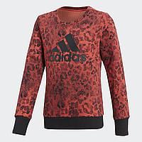 Детский джемпер Adidas Performance Essentials Graphic (Артикул: CF7248)