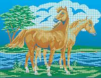 Схема для вишивки та вишивання бісером Бисерок «Пара коней» (A3) 30x40 ( f382d0497208f
