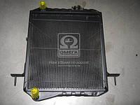 Радиатор охлаждения Богдан,  Isuzu Е-2 2 ряд. медн. (TEMPEST) TP8973710110