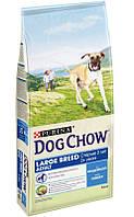 Dog Chow Puppy Large Breed, для щенков крупных пород 14 кг
