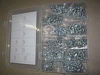 Набор пресс-масленок, 450 шт. М6, М8, М10. Прямые и угловые 45-90гр. (RIDER) RD11450ZK