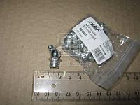 Пресс-масленка М10х1х45 угловая (10шт) (RIDER) RD-0011
