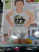 Комплект детский для мальчика майка и шорты опт и розница