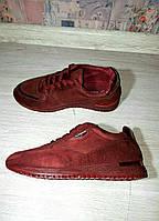 Кроссовки модеые! женские кроссовки, фото 1
