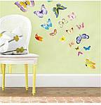 Набор декоративных наклеек  бабочек , фото 3